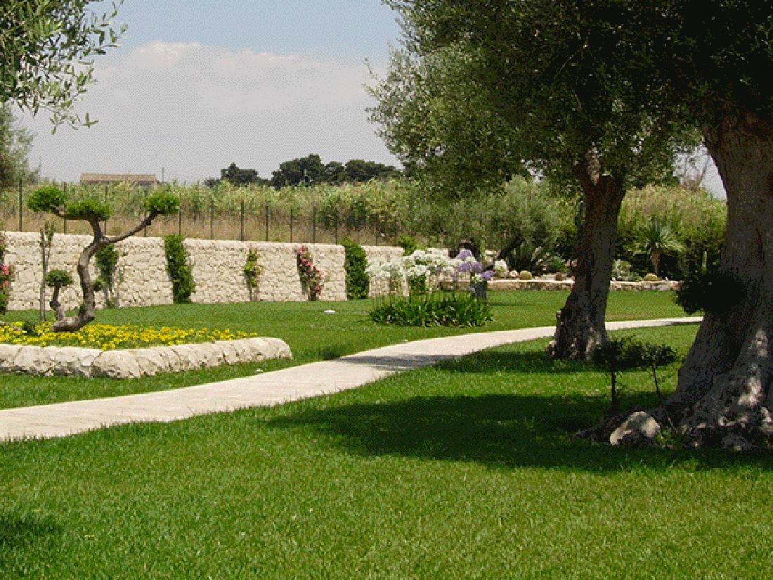 vivai giannuso rosolini piante mediterranee e giardini