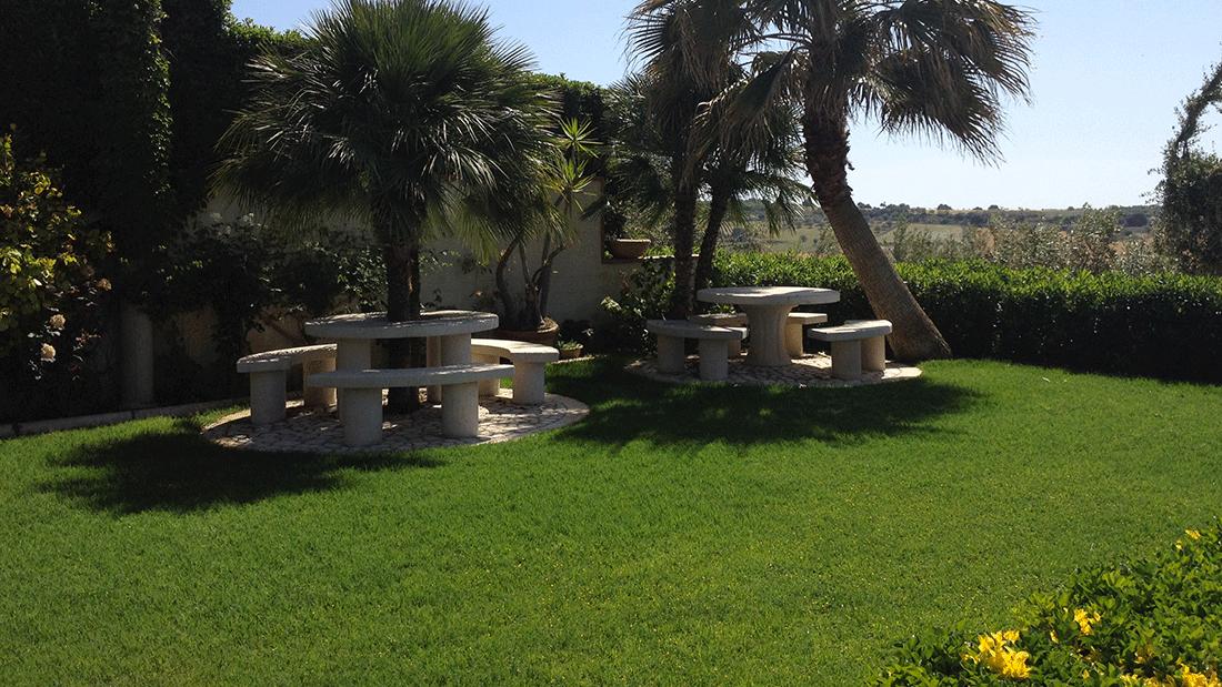 Prato pronto: un tocco di verde per il tuo giardino