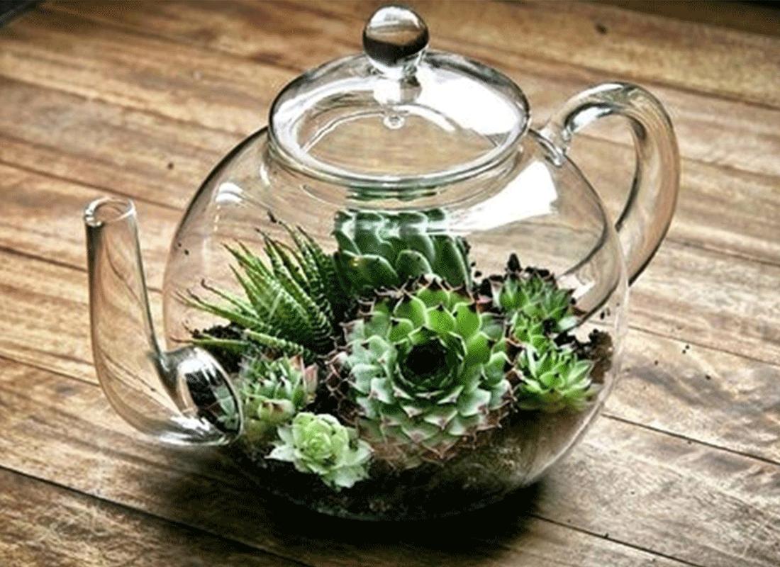 I terrari fai da te per le piante da interno